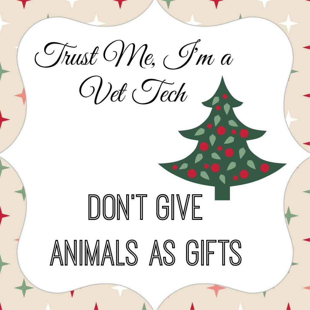 Don't Give Animals as Gifts